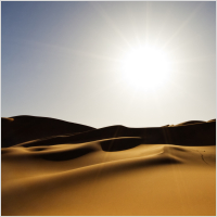 typing_test_desert